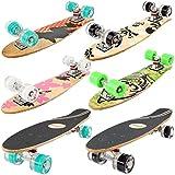 FunTomia Mini-Board Cruiser Skateboard 57cm aus