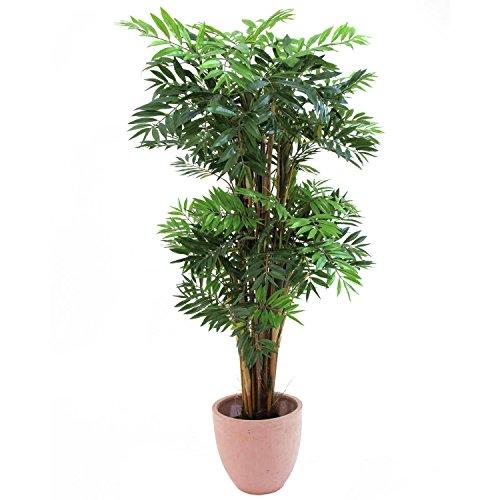 bambu-imperatore-ornamentale-3385-foglie-tronco-naturale-250-cm-pianta-verde-pianta-artificiale-artp