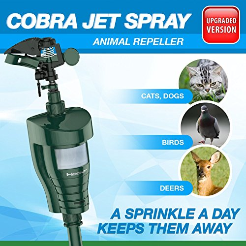 hoont-cobra-powerful-outdoor-water-jet-blaster-animal-pest-repeller-motion-activated-expels-cats-dog