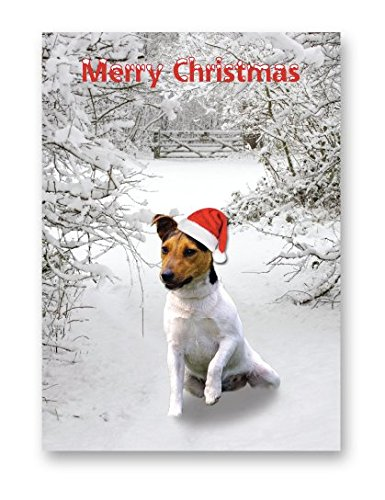 jack-russell-terrier-christmas-card-xmas-dog-cards-sold-individually