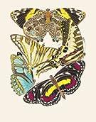 Papillons by E.A. Seguy (V&A Custom Print)