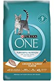 Purina ONE Dry Cat Food, Chicken & Turkey Flavor, 16-Pound Bag, Pack of 1