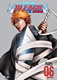 Bleach: Volume 6 - The Entry (Episodes 21-24)