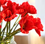 10 PCS new arrivals high quaulity Fresh Artificial Mini Real Touch PU latex Corn Poppies Decorative Silk fake artificial poppy flowers for Wedding holiday Bridal Bouquet Home Party Decor bridesmaid bouquets (red)
