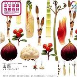 ネイチャーテクニカラーMONO 山菜ソフトストラップ2 「6種セット」 奇譚クラブ ガチャポン