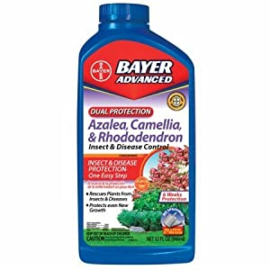 Bayer 701240B Dual Protection Azalea, Camellia & Rhododendron Insect & Disease Control Concentrate - 32 oz.