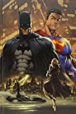 Absolute Superman/Batman Vol. 1