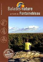 Balades nature en forêt de Fontainebleau