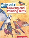 img - for By Shirley Porter Drawing and Painting Birds (Watercolor Basics) [Paperback] book / textbook / text book