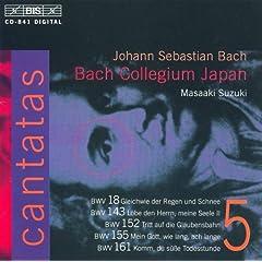 Tritt auf die Glaubensbahn, BWV 152: Recitative: Der Heiland ist gesetzt (Bass)