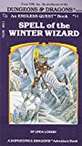 Spell of the Winter Wizard (Endless Quest, Book 11 / A Dungeons & Dragons Adventure Book)