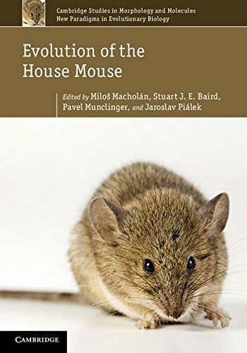 Evolution of the House Mouse Hardback (Cambridge Studies in Morphology and Molecules: New Paradigms in Evolutionary Bio)
