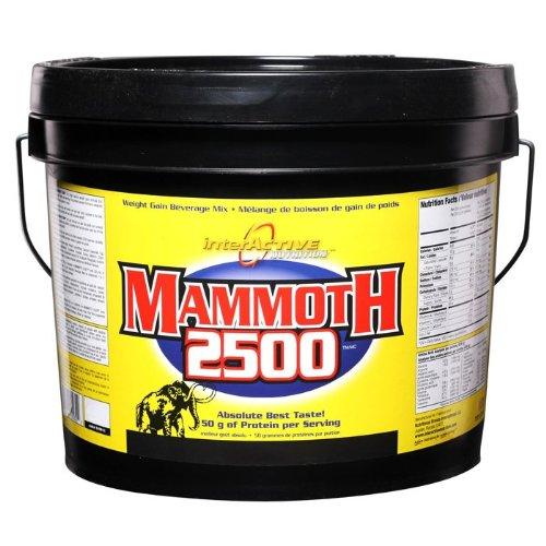 Interactive Nutrition Mammoth 2500 Vanilla Powder 4400g