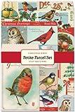 Cavallini 12-Pack Petite Christmas Birds Parcel Set