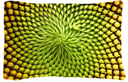 Microfiber Peach Standard Soft And Silky Decorative Pillow Case (20 * 26 Inch) - Nature Flowers Flowers Macro Abstract Pattern Texture