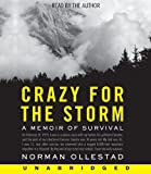 Crazy for the Storm CD