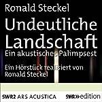 Undeutliche Landschaft | Ronald Steckel