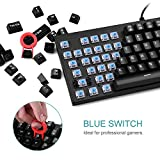 87Keys-Spill-Resistant-Blue-Switches-Mechanical-Keyboard-VicTsing-Clicky-Mechanical-Gaming-Keyboard-with-Compact-US-Layout-Full-Keys-Anti-Ghosting-Optimally-Angled-for-a-Comfortable-Position-to-Gamers