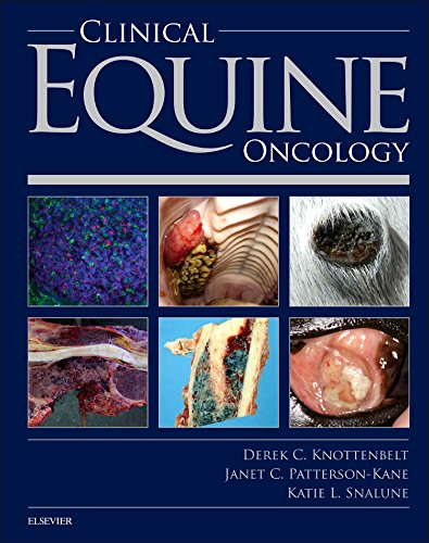 clinical-equine-oncology