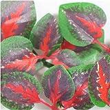 Reptile Vivarium Jungle Silk Plant Red Cissus Large