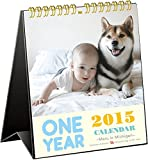 2015 ONE YEAR~Maru in Michigan~ 卓上カレンダー C-674-JS