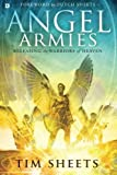 img - for Angel Armies: Releasing the Warriors of Heaven book / textbook / text book