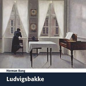 Ludvigsbakke Audiobook