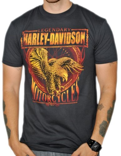 Harley-Davidson Mens Legend Forever Black Short Sleeve T-Shirt (Large)
