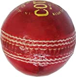 Rhino County Cricket Leather Ball