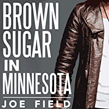 Brown Sugar in Minnesota: Cooper Smith, Book 1 Audiobook by Joe Field Narrated by Ward Paxton
