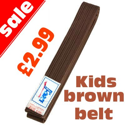 Martial arts Brown Belt For Kids Judo Karate Taekwondo 200cm