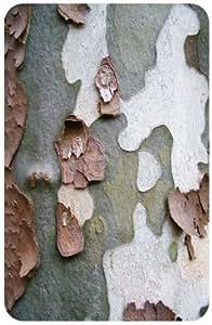 Tree Bark Peeling White Back Cover Case for Amazon Kindle Fire 7