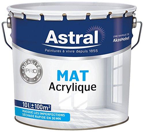 akzonobel-as5076887-vernice-bistrato-10-l-colore-bianco-opaco