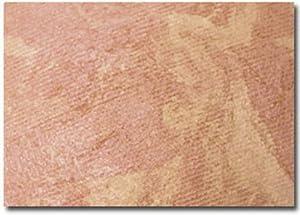 Prestige Bronzer, Pure Shimmer, 0.28-Ounce