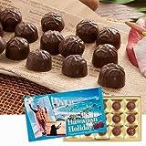 ハワイアンホリデー マカデミアナッツ チョコレート 【ハワイ 海外土産 輸入食品 スイーツ 】163501