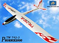 2.4GHz 6-Ch Radio Remote Control Phoenix2000 EPO 2m Air Glider Rc Airplane Ready to Fly by Midea Tech