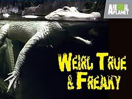 Weird True and Freaky Season 1 [HD]