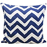 Store Indya Cushion Cover Hand Woven Blue Pure Cotton Throw Pillow Case Home Sofa Decorative