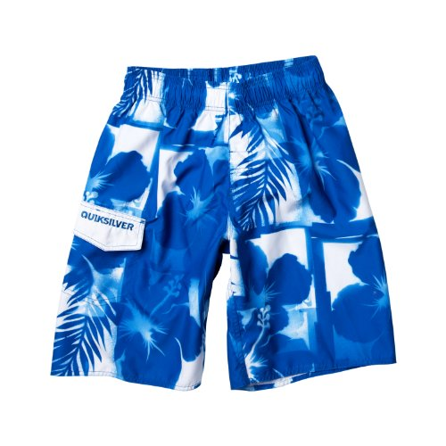 Quiksilver Chewlips 21 JA Men's Swim Shorts Royal Large