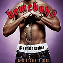 Homeboys: Gay Urban Erotica (       UNABRIDGED) by Shane Allison Narrated by Shannon Gunn, Greg Mason