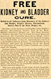 1901 Vintage Quackery Ad Kidney Bladder Cure Kava Shrub - Original Print Ad