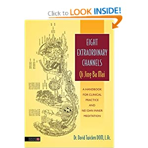 Eight Extraordinary Channels-Qi Jing Ba Mai: A Handbook for Clinical Practice and Nei Dan Inner Meditation download