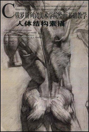人体结构素描(俄罗斯列宾美术学院绘画基础教学)