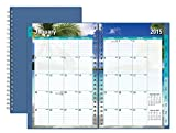 Blue Sky 2015 The Endless Summer Weekly and Monthly Planner, Wire-O Bound, Blue Cover, 5 x 8 Inches