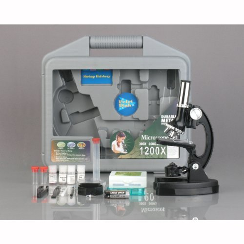 Amscope M30-Abs-Kt2 300X-600X-1200X Metal Frame Kids Student Beginner Biological Microscope Toy Kit Toy, Kids, Play, Children
