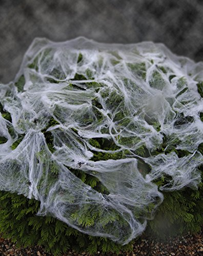 Outdoor Halloween Spider Web & 12 Spooky Spiders for Outside Use
