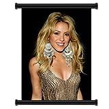 Shakira Artist Fabric Wall Scroll Poster
