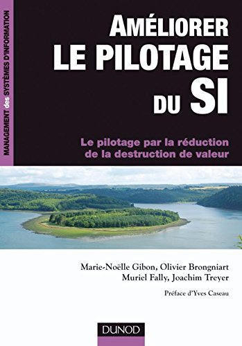 Améliorer le pilotage du SI (French Edition)