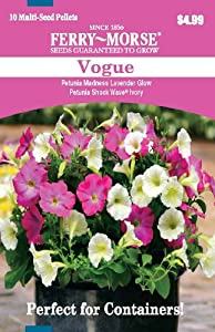 Ferry Morse 2177 Container Combinations, Petunia-Vogue