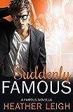Suddenly Famous: A Famous Novella (Famous Series Book 5)